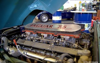 Jaguar E-Type V 12 OTS Serie 3 mit 7,5 Litern Hubraum